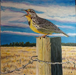 Meadowlark III by quiltineb