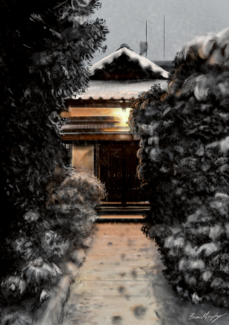 Snow In Japan by BrianJMurphy