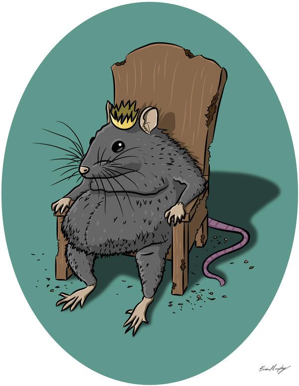 Ratking by BrianJMurphy