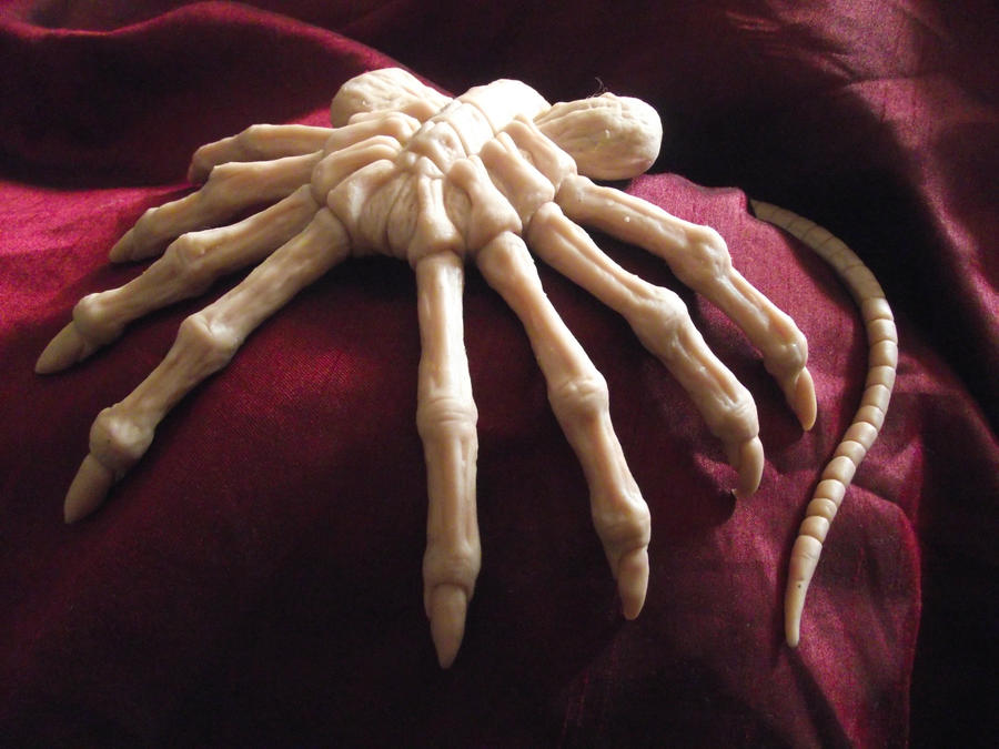Alien Facehugger by dischordiasnightmare
