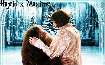 H x M ID by Hagrid-x-Maxime