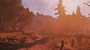 Bright Sun Trail