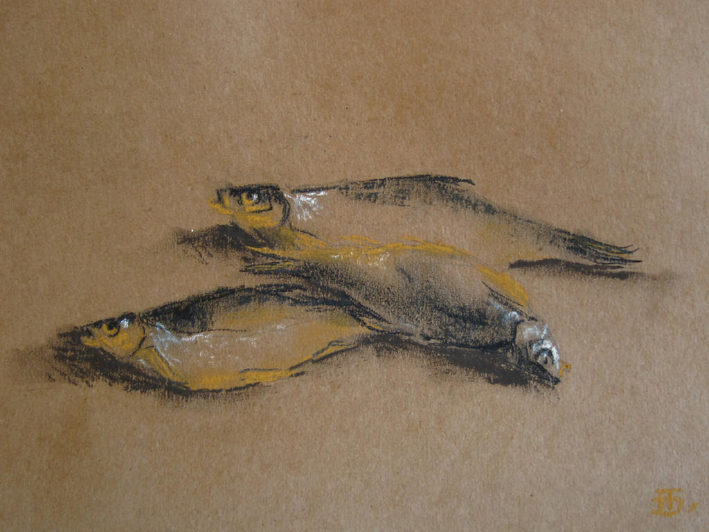 Threefish by andaushi