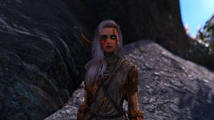 SSE Guards of Pale