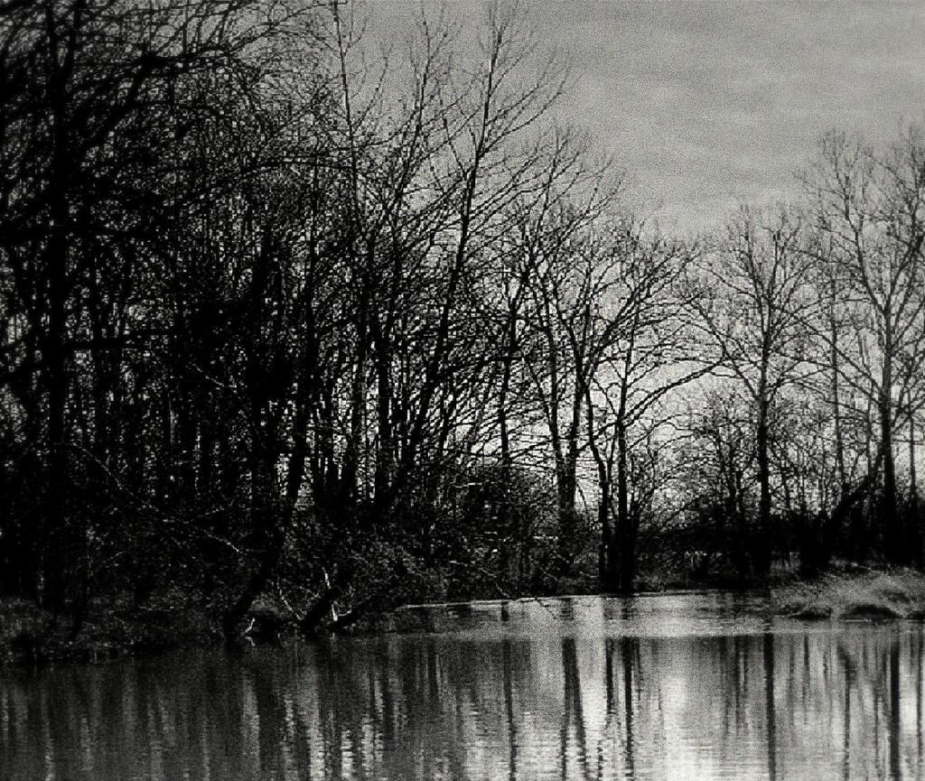 Dark water...dark woods... by wolfcreek50 on DeviantArt