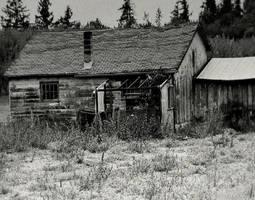 Depth of melancholy... by wolfcreek50