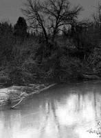 Shadow lands... by wolfcreek50