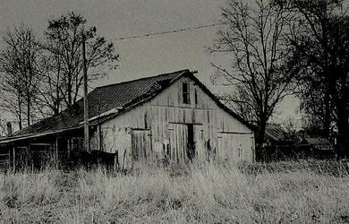 Darkness settled... by wolfcreek50