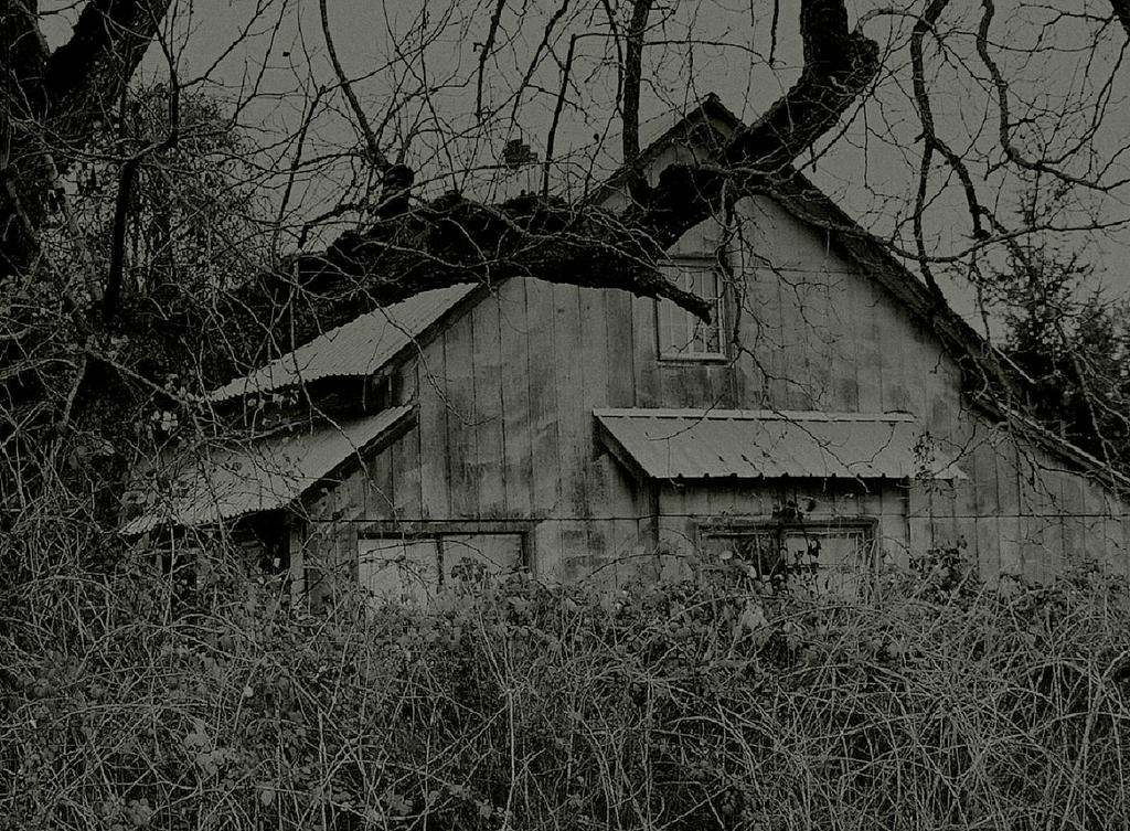 A dark repose... by wolfcreek50