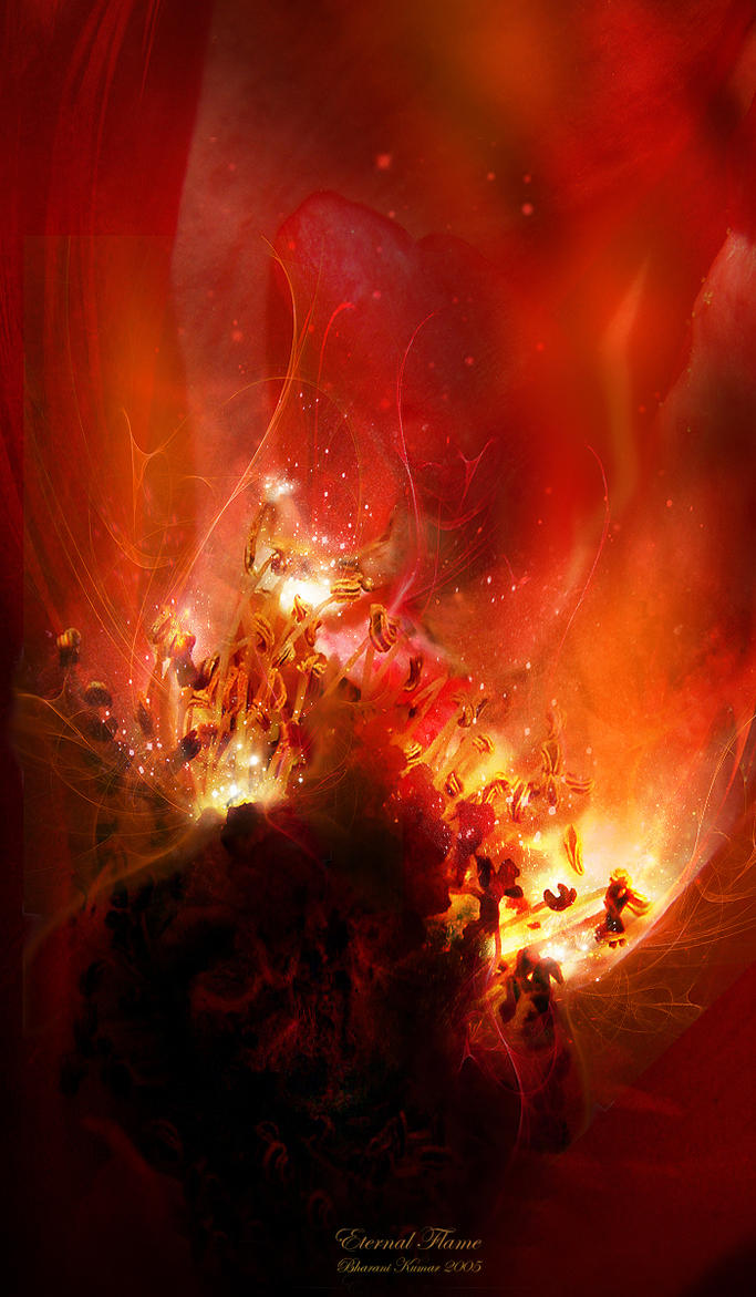 eternal flame by silvatrez