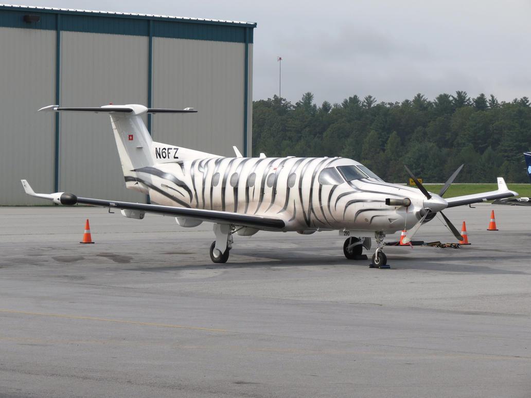 Zebra-Striped Pilatus by InDeepSchit