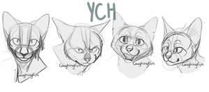 Feline ychs $5 ((clolosed