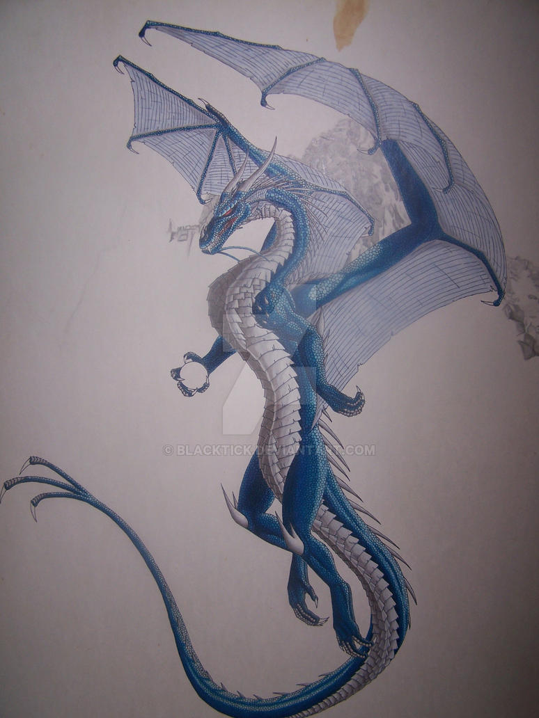 flying blue dragon by blacktick on DeviantArt