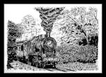 Steam locomotive Ok22 - pen and ink.