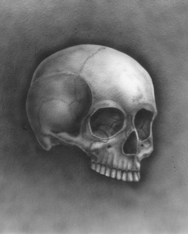 Skull - my first airbrush try. by czajka