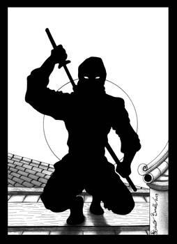 Study of the ninja!