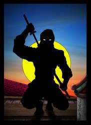 The Ninja - Second Study