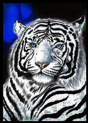 White Tiger - New version with some colors