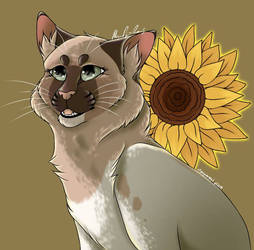 Sunflower Days - Complex Bust Commission
