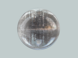 Forest crystal ball