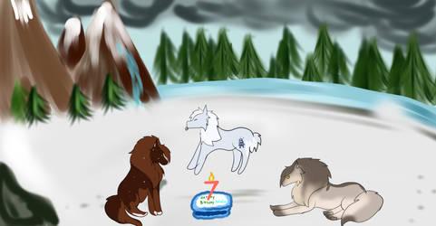 Tokotas 7th Birthday ! Happy Birthday Tokos !