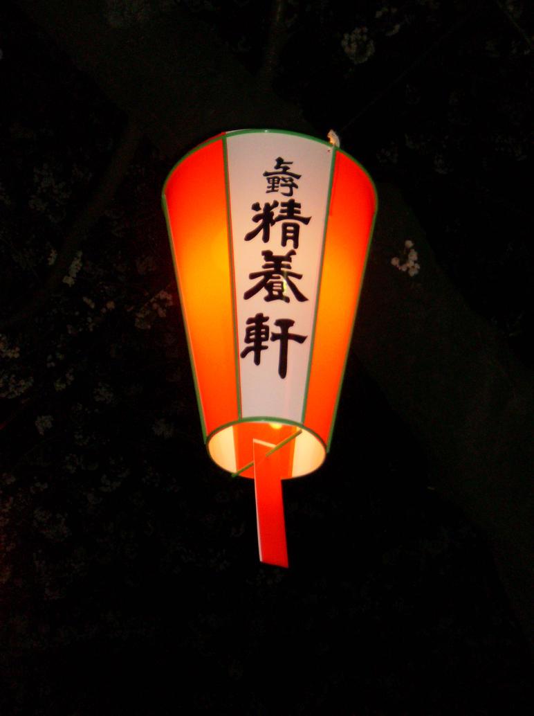 [Resim: The_Lantern_by_Callida.jpg]