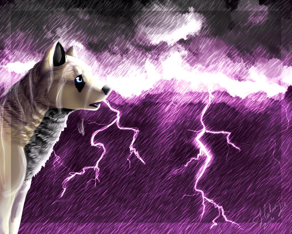 Storm Admiring by DarkWolfArtist