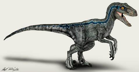 Jurassic World Velociraptor Blue by NikoRex