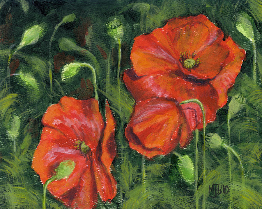 Poppies by spudsy2