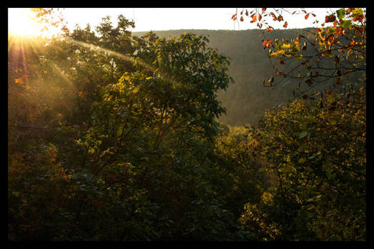 Sunrise Across The Ravine