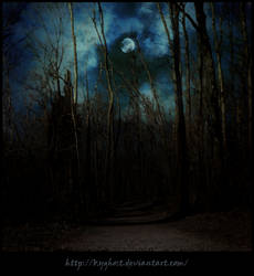 Premade Background_Path Under the Moon II