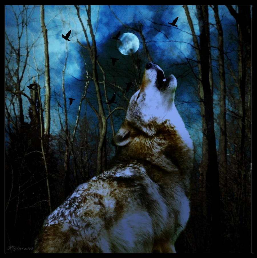 Wolf Moon by KYghost on DeviantArt