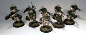 Squad 409, Imperial Guard Veterans
