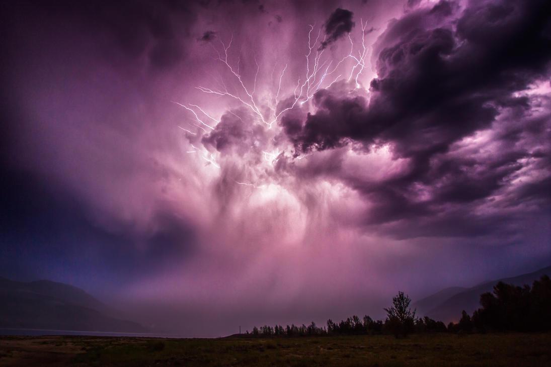 Downpour by lee-orr