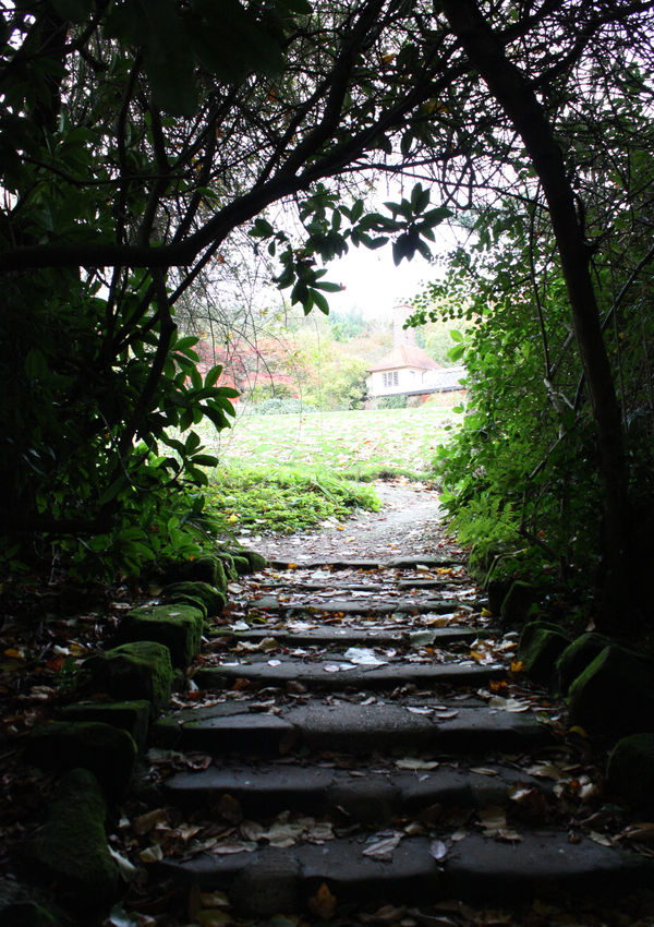 Fairy's hideout10 by LeafsStock