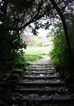 Fairy's hideout10