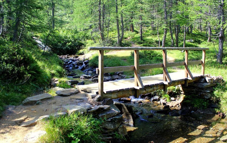 small wooden bridge by frei76 ...