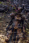 Diablo III Reaper of Souls, Crusader Female