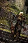 Crusader Female Diablo III Reaper of Souls