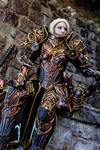 Diablo III Reaper of Souls Crusader Female