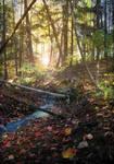 Premade Background - Forest by JL-ArtandStock