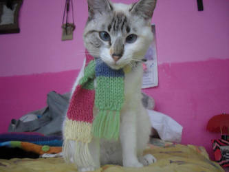 Sophie and the colorful scarf by MeiryAllyn