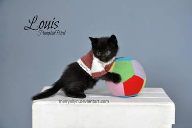 Lou by MeiryAllyn