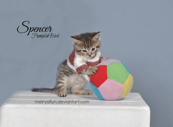 Spencer by MeiryAllyn