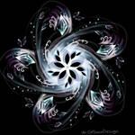 Flower Galaxy