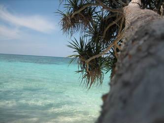 Island Silence by Rhyagelle