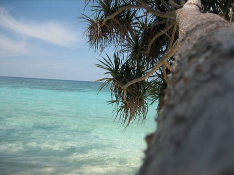Island Silence