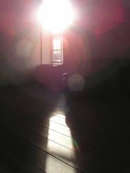 against the light by JSaurer