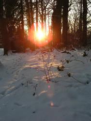 sundown in the winter 1 by JSaurer