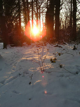 sundown in the winter 1